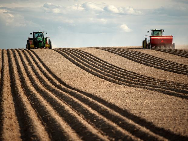 pole-pozemok-rola-traktor-druzstvo-nestandard2